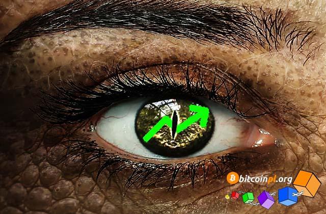altcoiny-oko