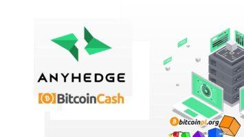 anyhedge-bitcoincash-defi