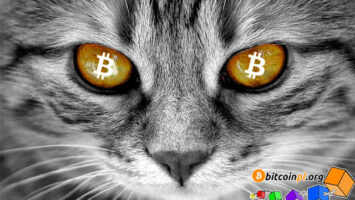 bitcoincat-hardfork