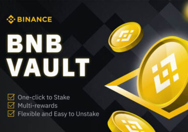 bnb-vault