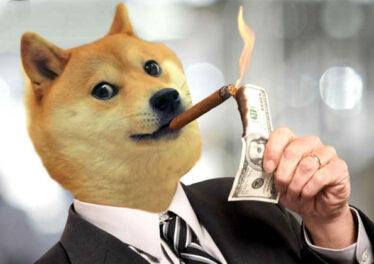 dogecoinnew