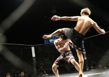 mixed-martial-arts-1420209_640